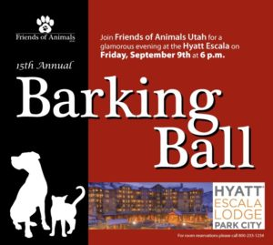 BarkingBall15