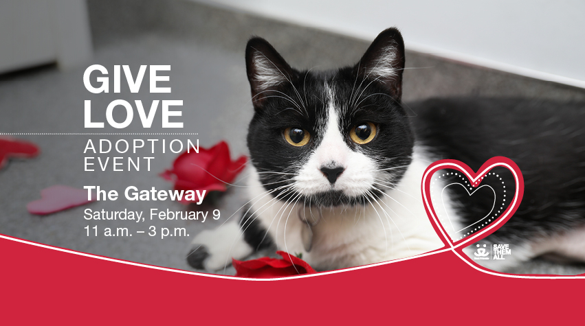 Give Love Adoption Event
